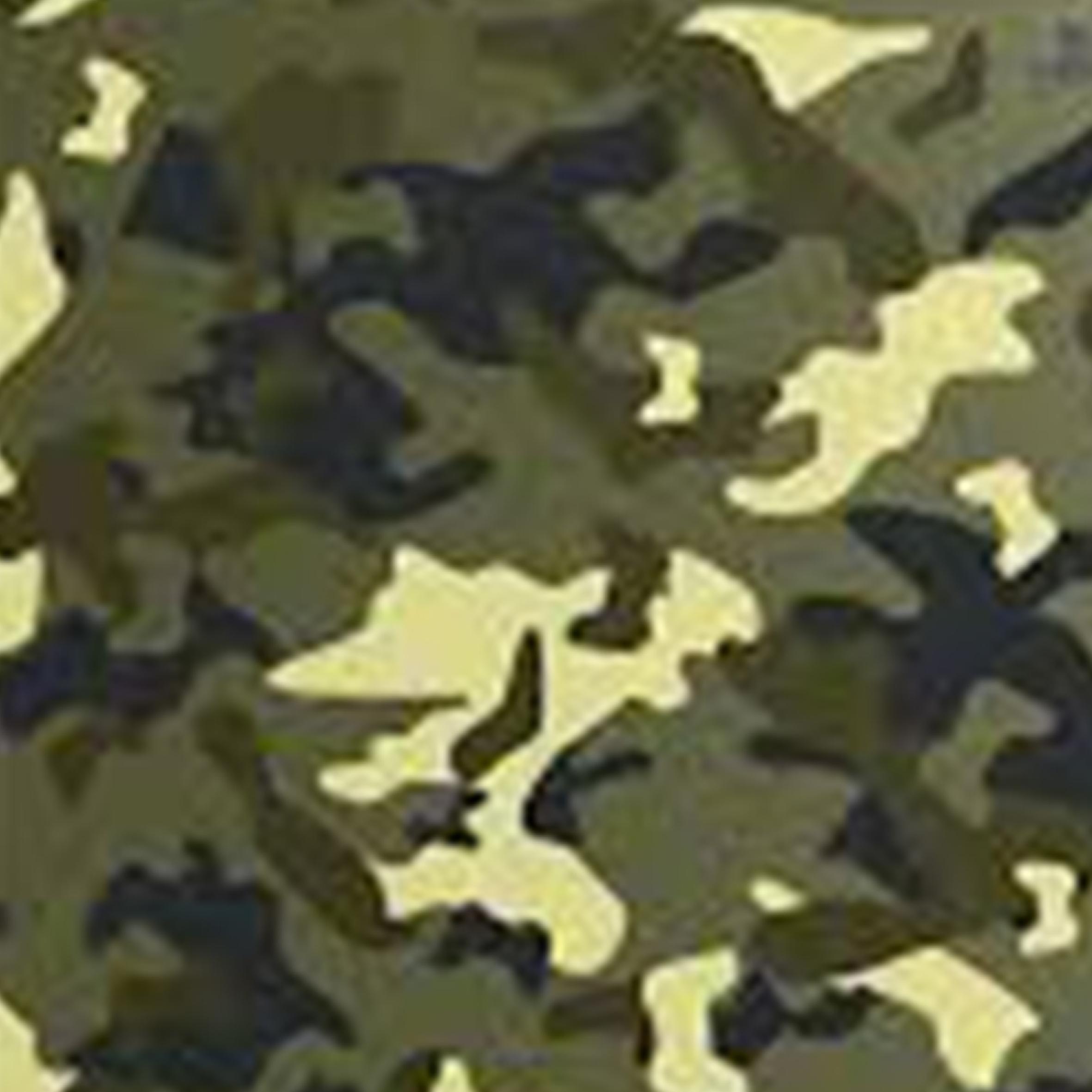 ارتشی